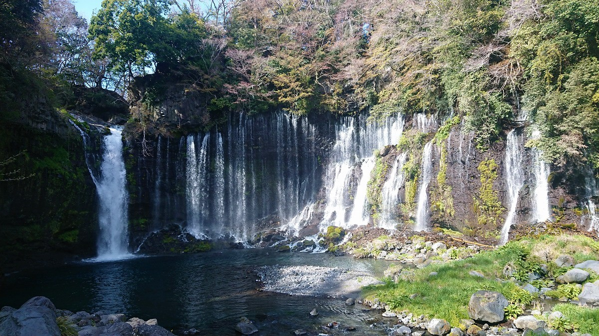 富士宮の白糸の滝