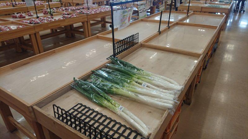 朝は新鮮な朝取れ野菜がたくさん並ぶそうです