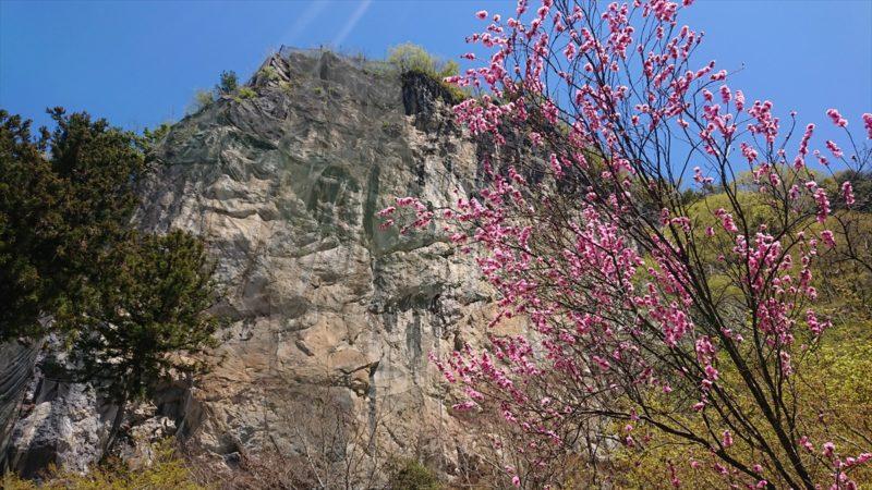 迫力ある75メートルの石灰岩岩壁