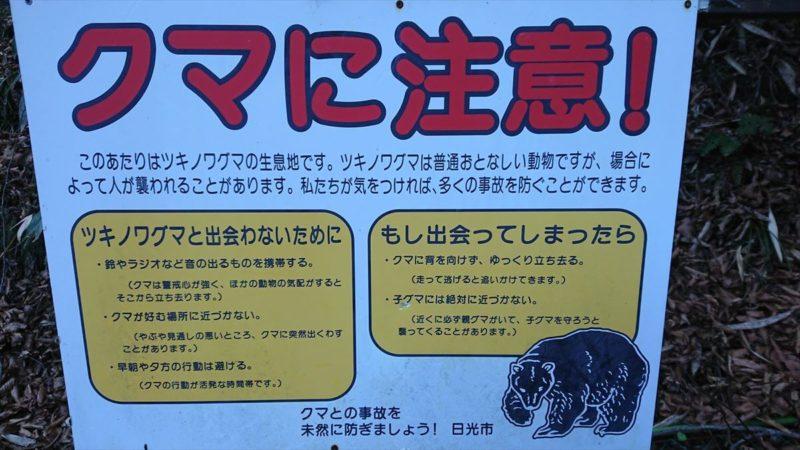 加仁湯周辺には熊が出る?