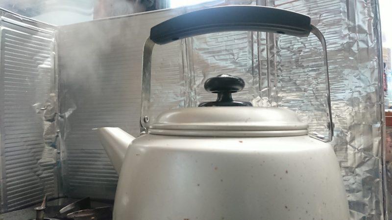 ゼニゴケの熱湯駆除の効果は?