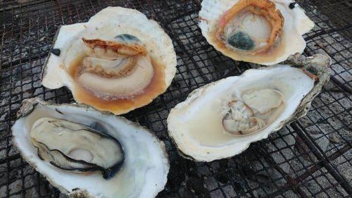 名取市の「ゆりあげ港朝市」で絶対食べた方が良いおすすめグルメ!